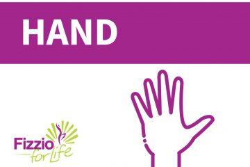 Fizzio-Your-body-hand